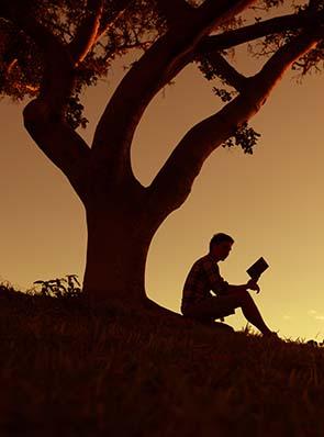 Joy of Reading